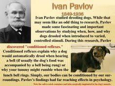 Adiestramiento Canino PAVLOV CCAM99