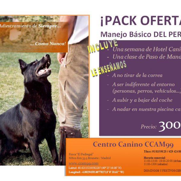 Oferta en Cursos de Adiestramiento de perros CCAM99
