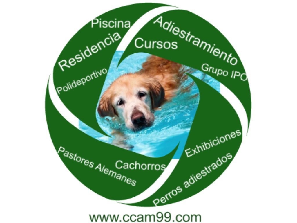 Residencia Canina Madrid CCAM99